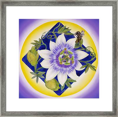 Bee And Passion Flower Framed Print