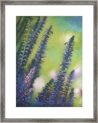 Bee Still #2 Framed Print by Judy Albright