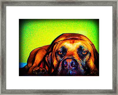 Beefy Girl In Bright Colors Framed Print