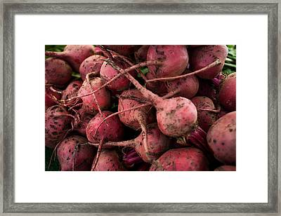 Beets Framed Print by Tanya Harrison