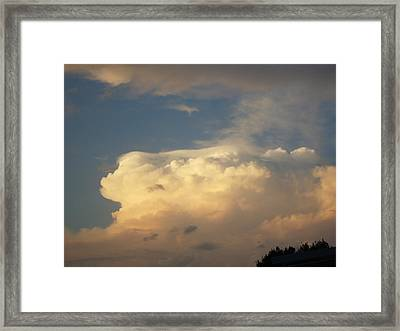 Before The Storm Framed Print by Debbie Wassmann