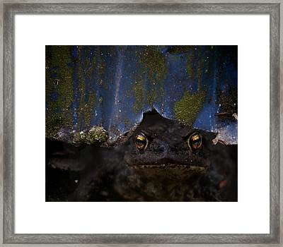 Behind The Curtain Framed Print by Odd Jeppesen