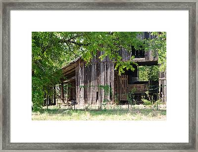 Behind The Trees Framed Print by Lisa Moore