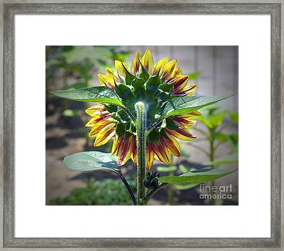 Behind You Framed Print
