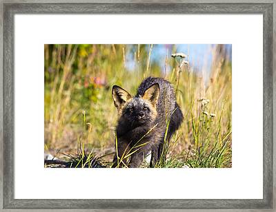 Being A Mom Is So Tiring Sometimes Framed Print by Darren Langlois