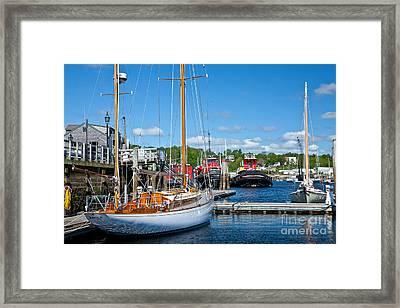Belfast Harbor Framed Print by Susan Cole Kelly