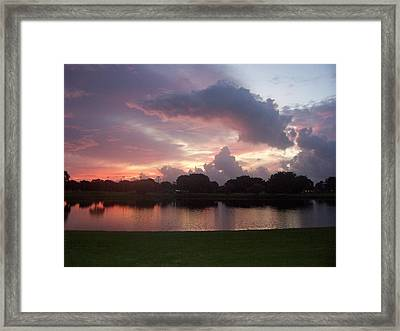 Believe It Or Not Framed Print