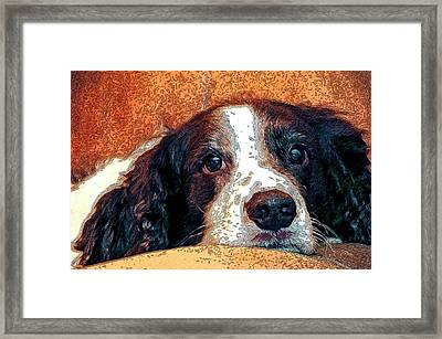 Bella Framed Print by James Steele