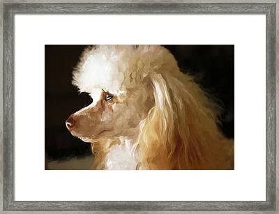 Bella Framed Print by Mickey Clausen