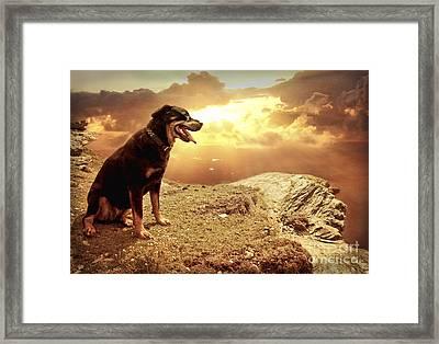 Bella My Rottweiler Framed Print by Eugene James