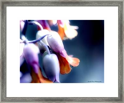 Bells Of Flora Framed Print