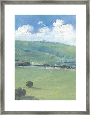 Bembridge Down In Early Summer Framed Print by Alan Daysh