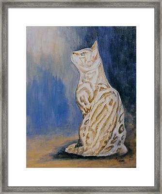 Ben The Snow Bengal Framed Print