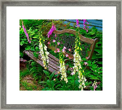 Bench Among The Foxgloves Framed Print