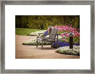 Bench In The Park Framed Print by Cheryl Davis