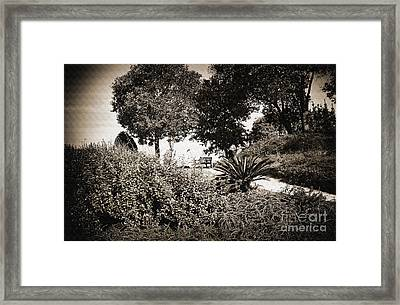 Bench Framed Print by Madeline Ellis