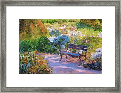 Bench On Margaret Island Framed Print
