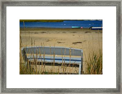 Bench On The Beach Framed Print by Bonnie Myszka
