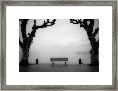 Bench Under Sycamore Trees Framed Print by Joana Kruse