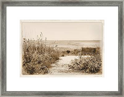 Bench With A View Framed Print by Rosalie Scanlon