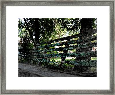 Benched Framed Print by Tammy Cantrell