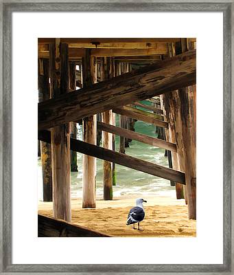 Beneath The Pier Framed Print by Diane Wood