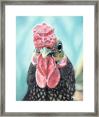 Benny The Bantam Framed Print by Baron Dixon