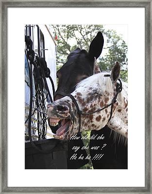 Benson Mule Day Birthday Card Photo Framed Print by Travis Truelove