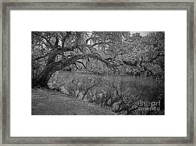 Framed Print featuring the photograph Bent Oak River Reflection by Larry Nieland
