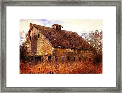Benton County Barn Framed Print by Daniel Morgan