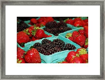 Berries Framed Print by Cathie Tyler