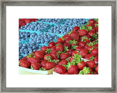 Berries Framed Print by Janice Drew