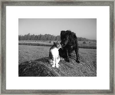 Best Buddies Black And White Framed Print