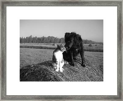 Best Buddies Black And White Framed Print