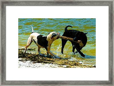 Best Friends Framed Print by David Lee Thompson