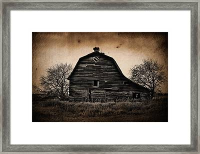 Between The Elms  Framed Print by Jerry Cordeiro