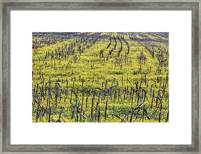 Between The Lines Framed Print by JC Findley