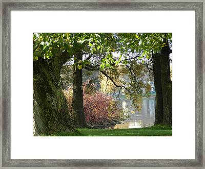 Between The Trees Framed Print by Dennis Leatherman