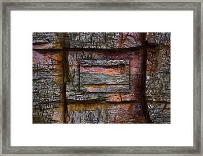 Between Tides Number 7 Framed Print by Carol Leigh