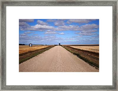 Between Two Fields Framed Print by Seana Stevenson