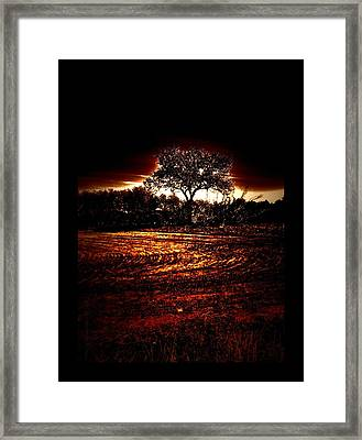 Between Worlds Framed Print by Mimulux patricia no No