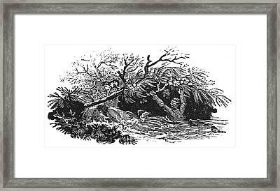 Bewick: Man Drowning Framed Print by Granger