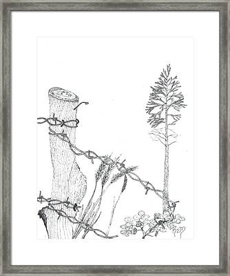 Beyond The Broken Fence - Sketch Framed Print by Robert Meszaros