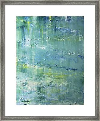 Beyond The Pond Framed Print by Dolores  Deal