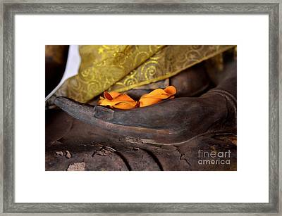 Bhumisparsa Mudra II In Colour Framed Print by Dean Harte
