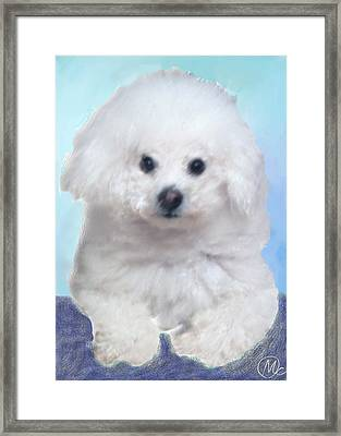 Framed Print featuring the digital art Bichon Frise by Mary M Collins