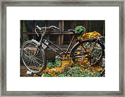 Bicycle Framed Print by Dev Gogoi