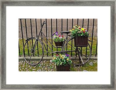 Framed Print featuring the photograph Bicycle In Salem by Caroline Stella