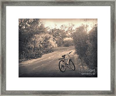 Bicycle In Tucson Framed Print