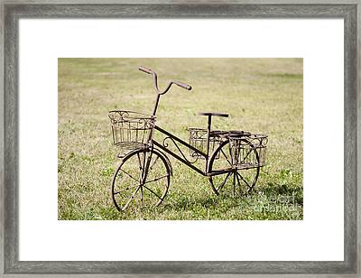 Bicycle Lawn Ornament Framed Print by Jaak Nilson